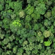 La Selva Biological Biological Station
